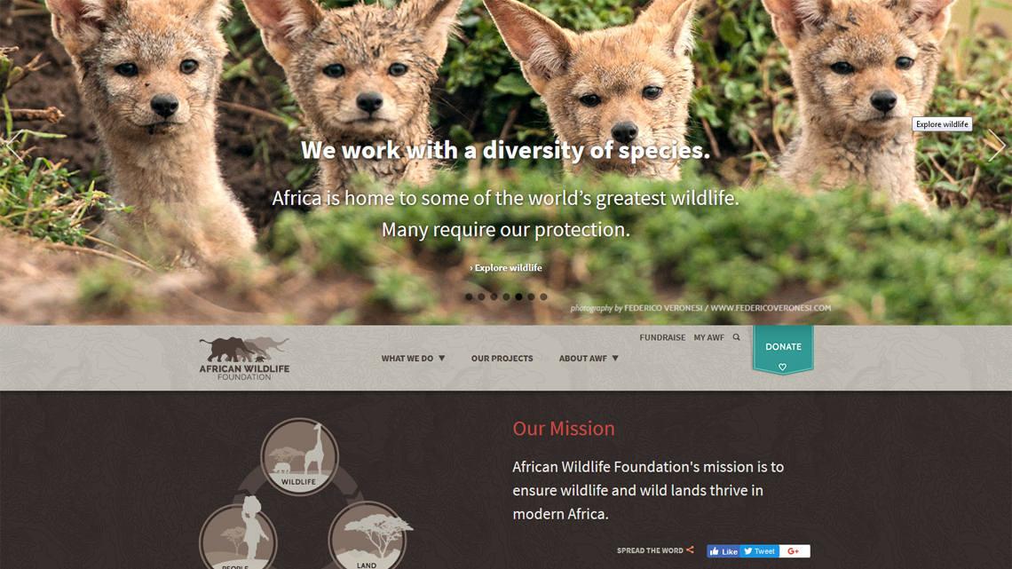 Drupal -- African Wildlife Foundation